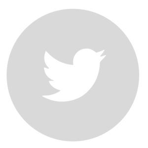 twitter circle gray 512
